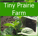 Tiny Prairie Farm